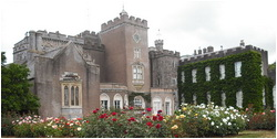 Powderham Castle Devon
